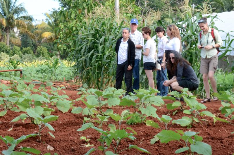group-at-alamar-farm