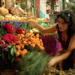 Moniquita Sorting Flowers